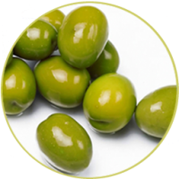 icon/olive-new1_1520659235.png